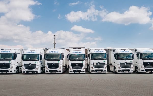 flota auto industria transporturilor de marfa